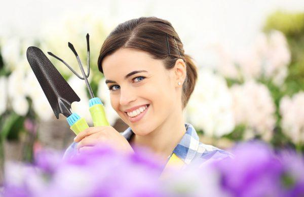 Bei uns finden Sie alltägliche Gartengeräte wie Spaten, Harke, Gartenkelle, Pflanzer, Handschuhe und viele weitere kleinen Geräte