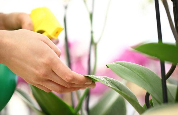 Pflanzenschutz Sortiment